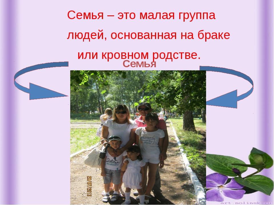 Семья – это малая группа людей, основанная на браке или кровном родстве. Сем...
