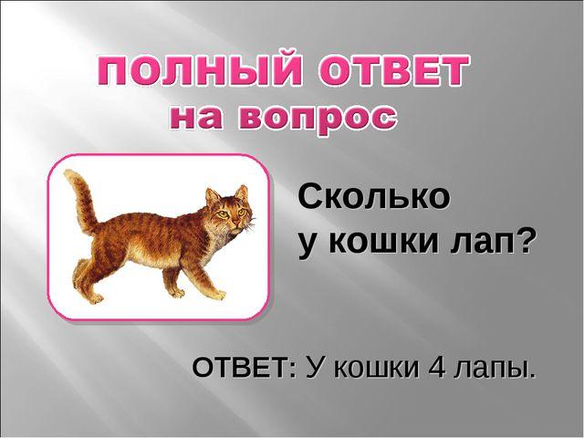 Сколько у кошки лап? ОТВЕТ: У кошки 4 лапы.