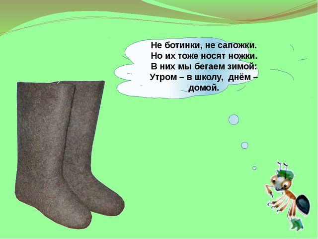 Не ботинки, не сапожки. Но их тоже носят ножки. В них мы бегаем зимой: Утром...