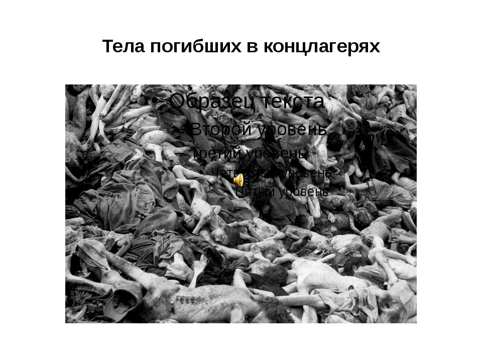 Тела погибших в концлагерях