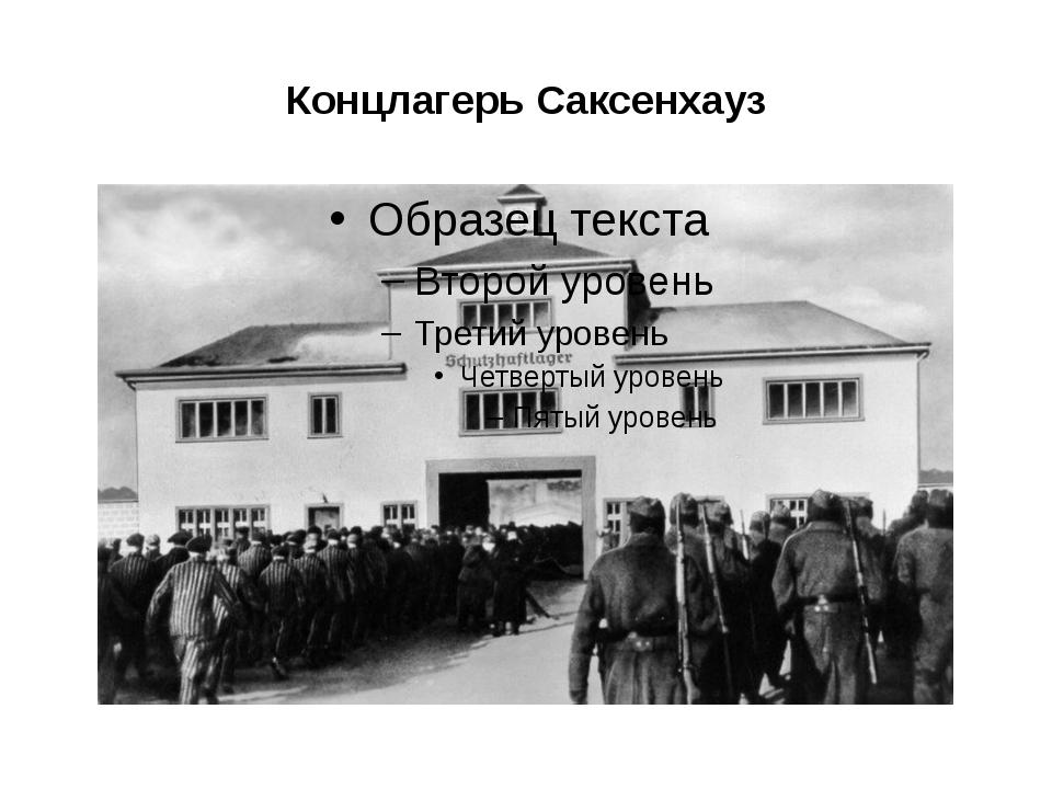 Концлагерь Саксенхауз