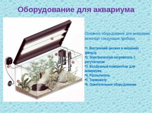 Оборудование для аквариума Основное оборудование для аквариума включает следу