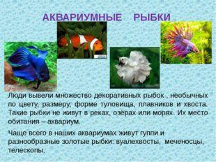 АКВАРИУМНЫЕ РЫБКИ Люди вывели множество декоративных рыбок , необычных по цве