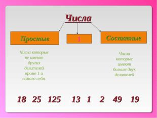 Числа 1 Простые Составные Числа которые не имеют других делителей кроме 1 и с