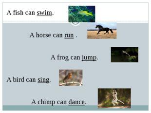 A fish can swim. A horse can run . A frog can jump. A bird can sing. A chimp
