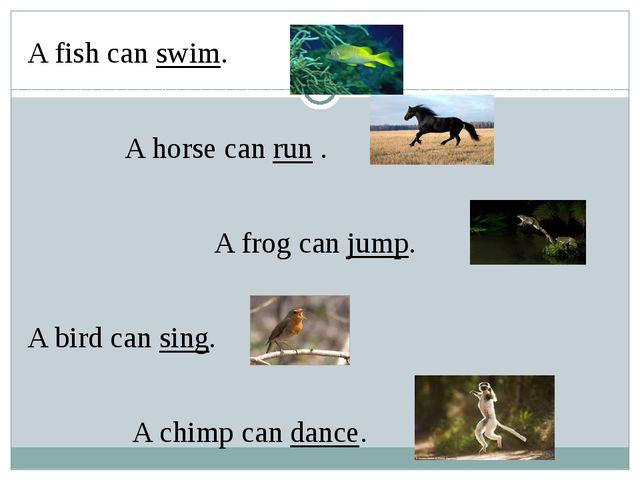 A fish can swim. A horse can run . A frog can jump. A bird can sing. A chimp...