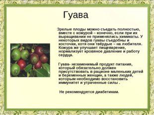 Гуава Зрелые плоды можно съедать полностью, вместе с кожурой – конечно, если