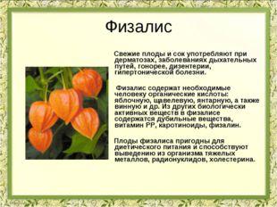 Физалис Свежие плоды и сок употребляют при дерматозах, заболеваниях дыхательн
