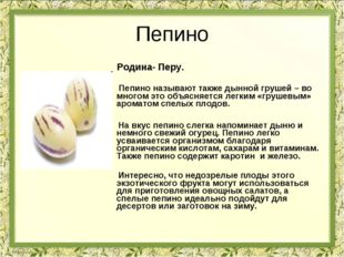 Пепино Родина- Перу. Пепино называют также дынной грушей – во многом это объя