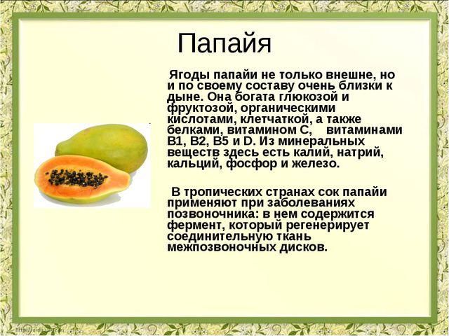 Папайя Ягоды папайи не только внешне, но и по своему составу очень близки к д...