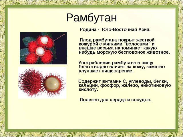 Рамбутан Родина - Юго-Восточная Азия. Плод рамбутана покрыт жесткой кожурой с...