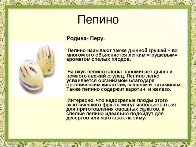 Пепино Родина- Перу. Пепино называют также дынной грушей – во многом это объя...