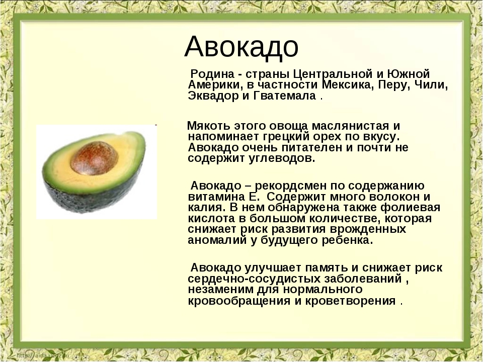 Авокадо Родина - страны Центральной и Южной Америки, в частности Мексика, Пер...