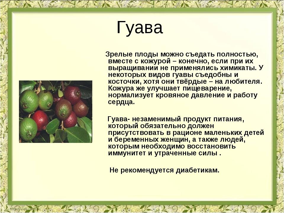 Гуава Зрелые плоды можно съедать полностью, вместе с кожурой – конечно, если...