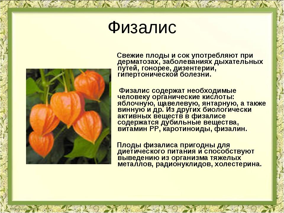 Физалис Свежие плоды и сок употребляют при дерматозах, заболеваниях дыхательн...