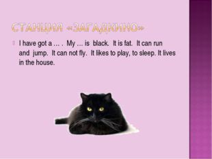 I have got a … . My … is black. It is fat. It can run and jump. It can not fl