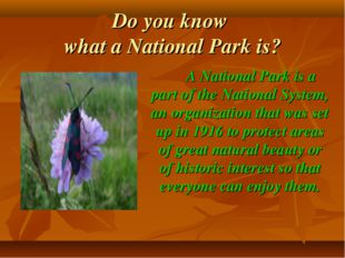 Do you know what a National Park is? A National Park is a part of the Nationa