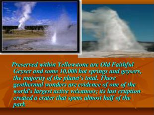 Preserved within Yellowstone are Old Faithful Geyser and some 10,000 hot spr