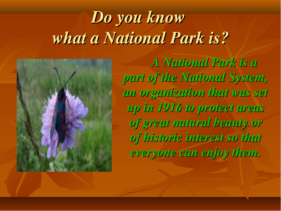 Do you know what a National Park is? A National Park is a part of the Nationa...