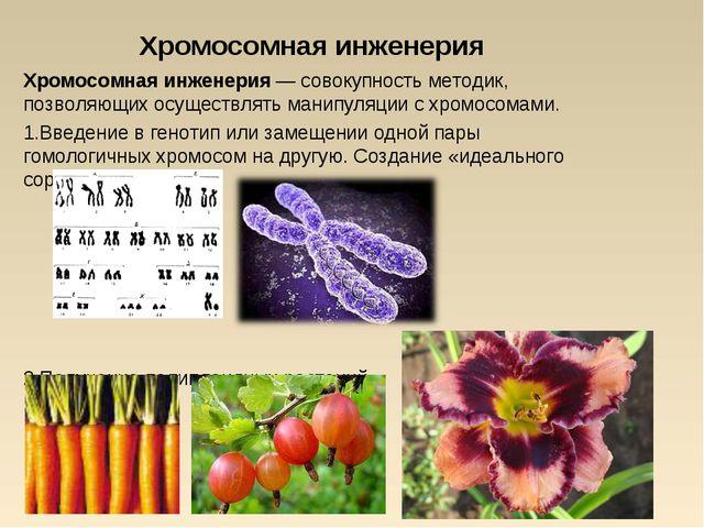 Хромосомная инженерия Хромосомная инженерия — совокупность методик, позволяющ...