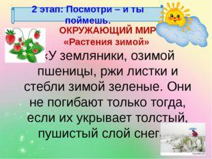 2 этап: Посмотри – и ты поймешь. ОКРУЖАЮЩИЙ МИР «Растения зимой» «У земляники