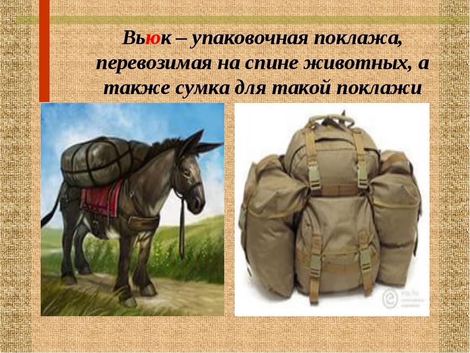 Вьюк – упаковочная поклажа, перевозимая на спине животных, а также сумка для...