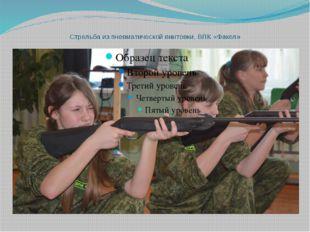 Стрельба из пневматической винтовки, ВПК «Факел»