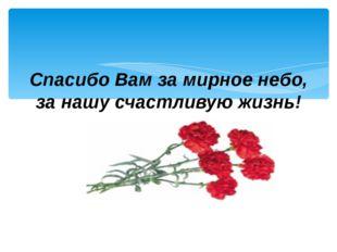 Спасибо Вам за мирное небо, за нашу счастливую жизнь!