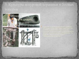 3. Культуры шнуровой керамики и боевых топоров Около 4500 лет назад в Брянски