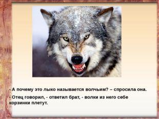 - А почему это лыко называется волчьим? – спросила она. - Отец говорил, - отв