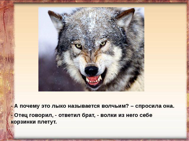 - А почему это лыко называется волчьим? – спросила она. - Отец говорил, - отв...