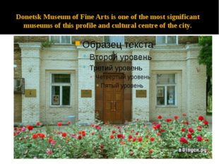 Donetsk Museum of Fine Arts is one of the most significant museums of this pr