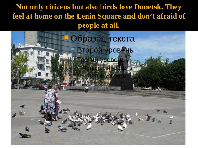 Not only citizens but also birds love Donetsk. They feel at home on the Lenin...