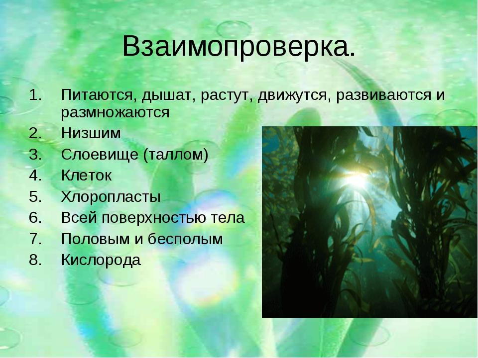 Взаимопроверка. Питаются, дышат, растут, движутся, развиваются и размножаются...