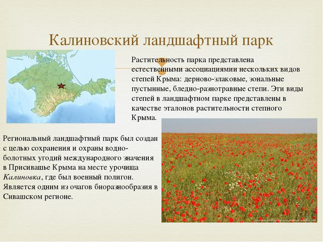 Калиновский ландшафтный парк Региональный ландшафтный парк был создан с целью...