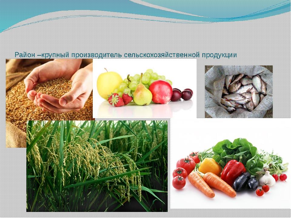 Район –крупный производитель сельскохозяйственной продукции