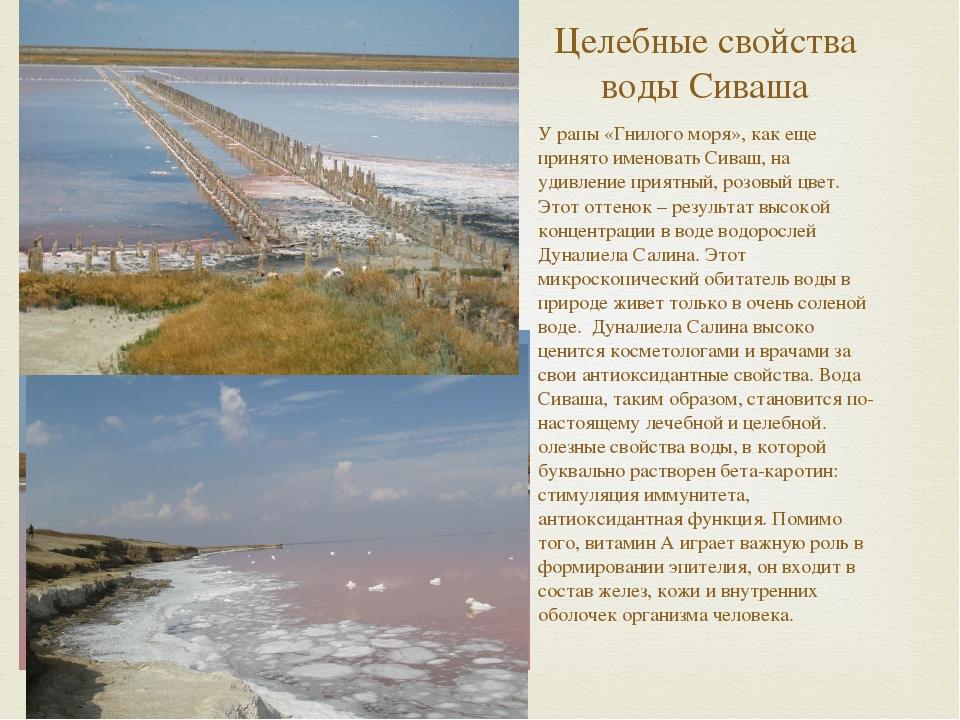 Целебные свойства воды Сиваша У рапы «Гнилого моря», как еще принято именоват...