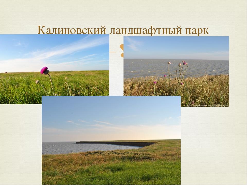 Калиновский ландшафтный парк 