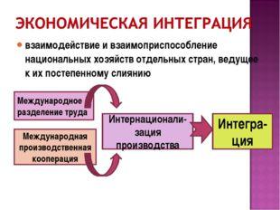 взаимодействие и взаимоприспособление национальных хозяйств отдельных стран,