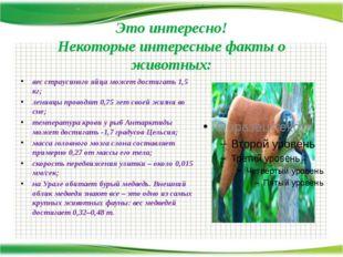 Это интересно! Некоторые интересные факты о животных: вес страусиного яйца мо
