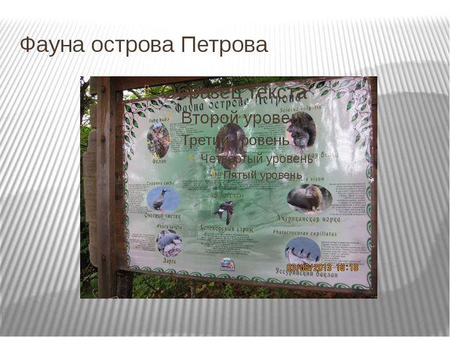 Фауна острова Петрова