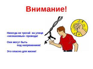 Внимание! Никогда не трогай на улице «незнакомые» провода! Они могут быть под