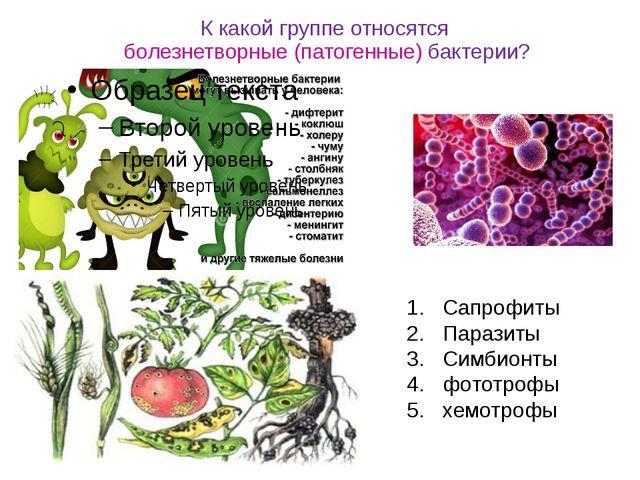 К какой группе относятся болезнетворные (патогенные) бактерии? Сапрофиты Пара...