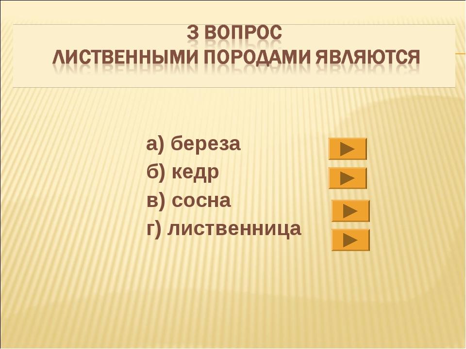 а) береза б) кедр в) сосна г) лиственница
