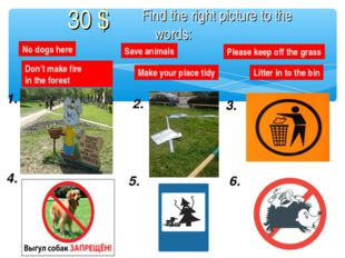 1. 2. 3. 4. 5. 6. No dogs here Save animals Please keep off the grass Litter