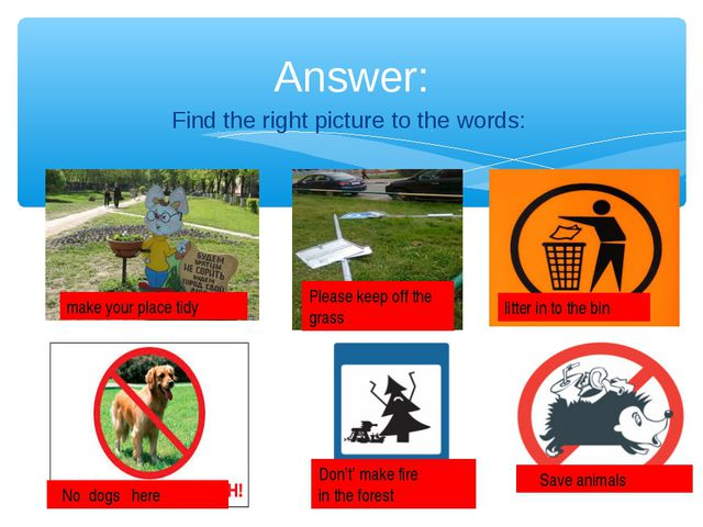 Find the right picture to the words: Answer: litter in to the bin No dogs he...
