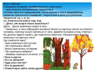 Игра «Прятки» Совершенствование грамматического строя речи – практическое упо