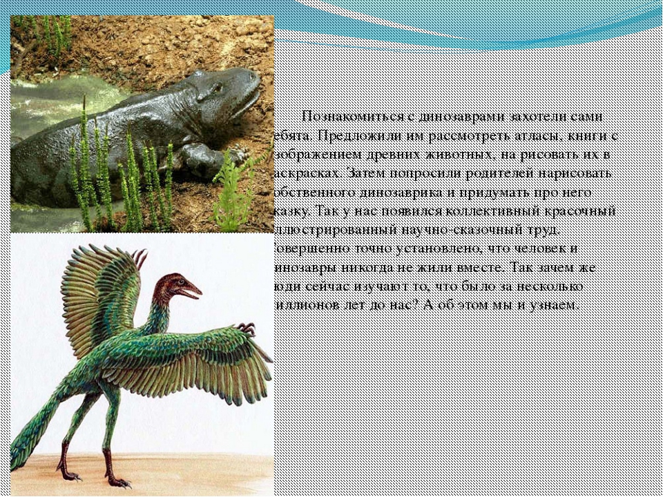 Познакомиться с динозаврами захотели сами ребята. Предложили им рассмотреть...