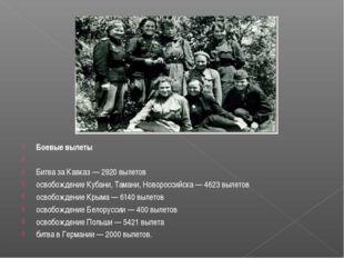 Боевые вылеты  Битва за Кавказ — 2920 вылетов освобождение Кубани, Тамани, Н