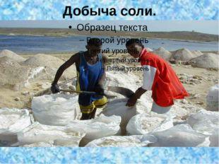Добыча соли.